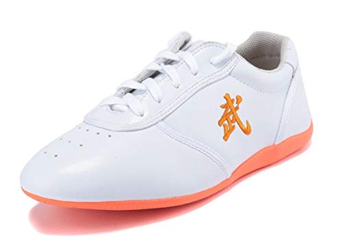 BJSFXDKJYXGS Leather Tai Chi Shoes Martial Arts Kung fu Shoes Chi Kung Shoes Martial Arts Boxing Shoes