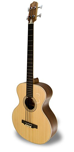 APC Instruments BG100 Bass Gitarre BG100 - APC