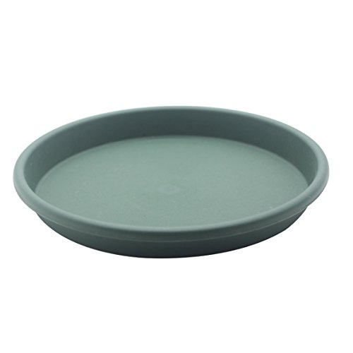 - 5Pcs Round Green Plastic Plants Pot Saucer Trays,for holding Soil and Water Drips Excellent For Indoor & Outdoor Plants (8.2in)
