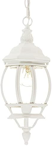 Acclaim 5056TW Chateau Collection 1-Light Outdoor Light Fixture Hanging Lantern, Textured White