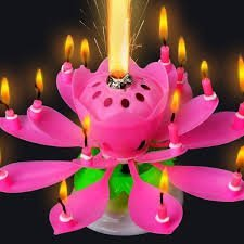 Masti Zone Pack Of 1 Musical Lotus Flower Rotating Happy Birthday Candle For Cack Decoration