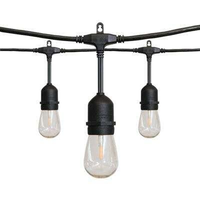 (Hampton Bay 24 ft. 12-Light Filament LED String)