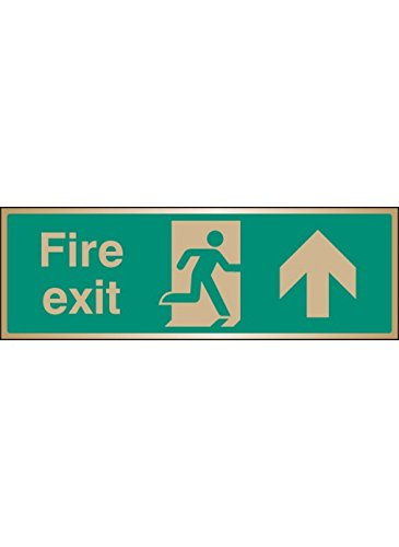 Caledonia Signs 59519 Fire Exit Arrow Ahead Brass Label, 300 mm x 100 mm Caledonia Signs Ltd