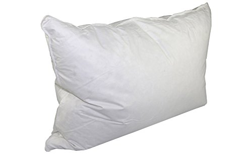 Bed Inn Hampton (Down Dreams Classic Firm Pillow (Formerly Classic Too) (Jumbo))