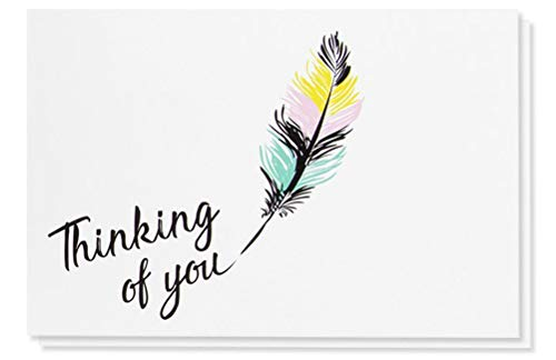 48-Pack Thinking of You Note Cards - Blank on the Inside, Colorful Feather Design, Includes 48 Greeting Cards and Envelopes, 4 x 6 Inches