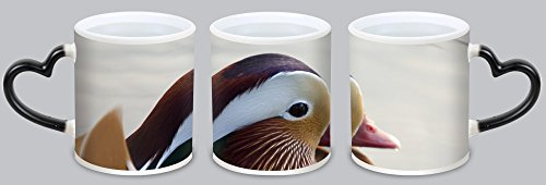 (DKLZY Lovers Gifts Customized Mandarin Duck magic Hot heat sensitive Color Changing Cup)
