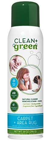 Clean+Green Carpet Cleaner Natural Stain and Odor Remover, Deep Clean Your Carpeted Floors with This Multi Purpose Spray- Safe for Pets, People and Environment, 14 oz. ()