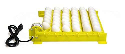 GQF HovaBator Automatic Egg Turner with 6 Universal Egg Racks - 1611 - Fits Chicken, Partridge, Duck, and More by GQF