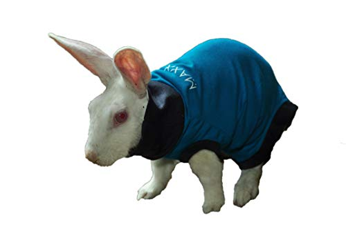 MAXX Rabbit E Collar Alternative, After Surgery Wear, Vet Approved Surgical Recovery Suit, Medical Pet Clothing, Wound & Skin Disease Protection, Pet Rash, Post Operative Pet Shirt, Anxiety wrap