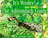 img - for It's Wesley! the Adirondack Guide book / textbook / text book