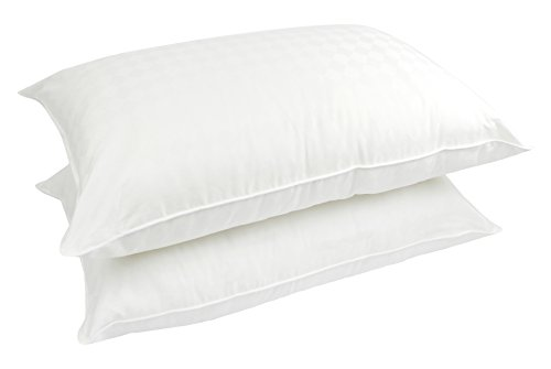 Price comparison product image Century Home C422-065 Supreme Polyester Filled Pillow (2 Pack), Queen