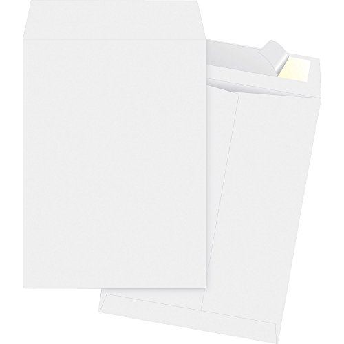 "Business Source Tyvek Open-end Envelopes, Document, 13 1/2, 10""x13"" (65771) from Business Source"