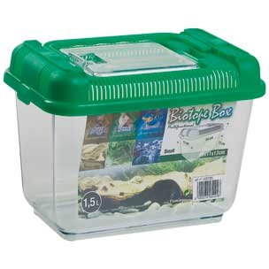Acuario plástico Biotopo Box Flamingo capacidad 1,5 litros: Amazon.es: Productos para mascotas