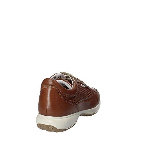 Man 1115033 Sneakers amp;co Brun Igi nxYCq8wzFt