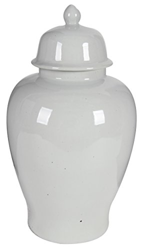 Benzara BM165658 Ceramic Ginger Jar with Lid, Off White