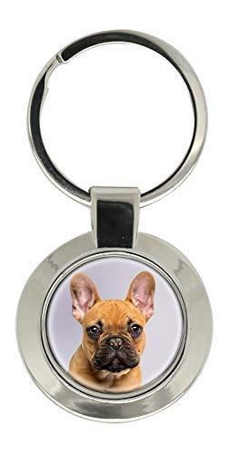 Bulldog Francés Cromado Llavero: Amazon.es: Ropa y accesorios