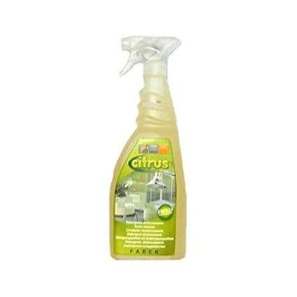 CITRUS Disincrostante detergente Brilla Bagno rubinetti ceramiche ...