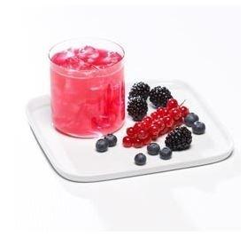 Bariatric Food Direct Proti 15 Wildberry