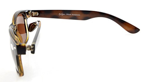 1 Marrón Lente 75 Gafas Bifocales Lentes Eyekepper gris de Clásico sol S0Ww1v4