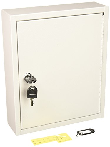 (Buddy Products 0128-32 Key Cabinet, 28 Hooks, Steel, 3 x 12 x 10-Inches,)