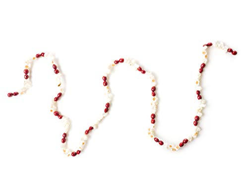 - CraftMore Popcorn and Cranberry Plastic Garland