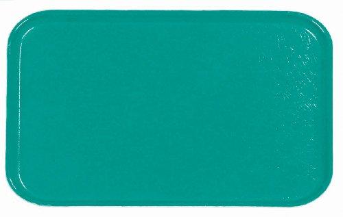 (Carlisle 2115FG011 Fiberglass Glasteel Solid Metric Tray, 20.87