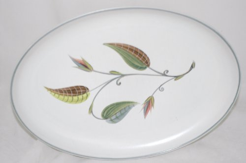 DENBY Spring Pattern Oval Serving Platter 12 1/2