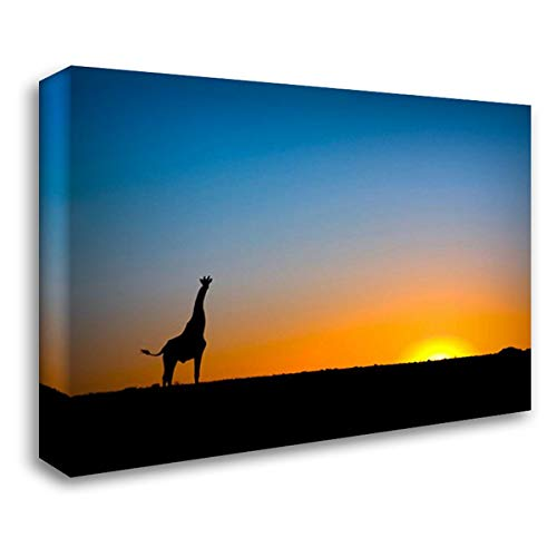 Giraffe Silhouetted Against The Setting Sun, Lethiau Valley, Central Kalahari Game Reserve, Botswana 24x17 Gallery Wrapped Stretched Canvas Art by Grafhorst, Vincent
