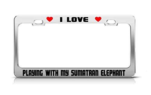 amiuhoun I Love Playing My Sumatran Elephant Animal License Plate Frame Tag