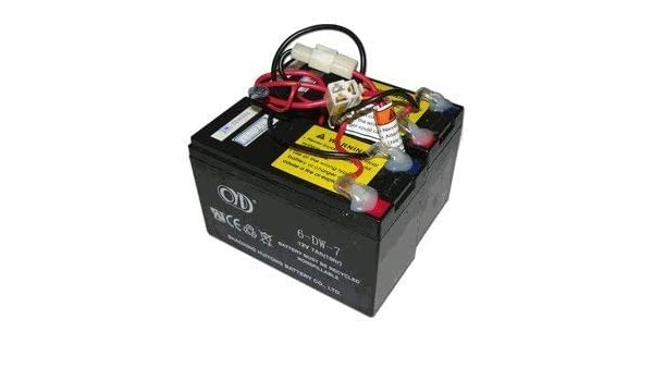 Razor E200 / E300 - Batería de repuesto para patinete ...