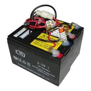 Razor E200 / E300 - Batería de repuesto para patinete eléctrico