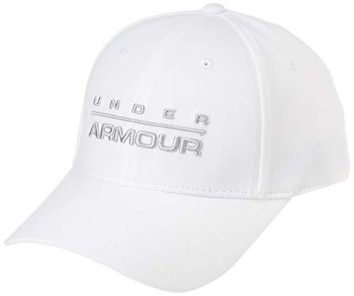 Under Armour Men's Wordmark Stretch Cap