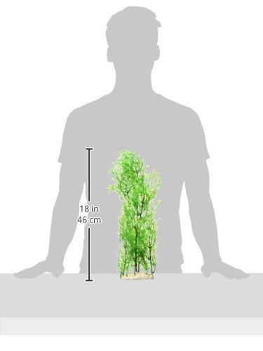 Amazon.com : eDealMax Jardín de bambú Estilo decorativo acuario Artificial Planta de plástico, Verde : Pet Supplies