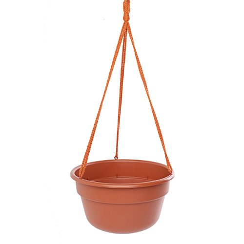 Bloem Dura Cotta Hanging Basket Terra Cotta Planter (Pack of 12) 12in is 12.3 inches diameter x 6.7 inches high by Bloem