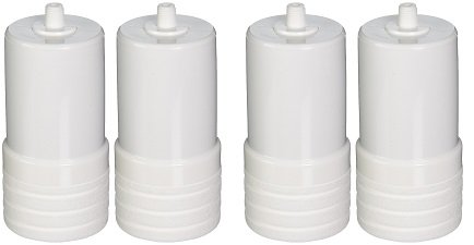 Aqua-Pure AP217 4629002 Under Sink Replacement Filter Cartridge (Pack of 2) (2-(Pack of 2))