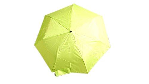 Raines Umbrella 42 inch Coverage Carrying