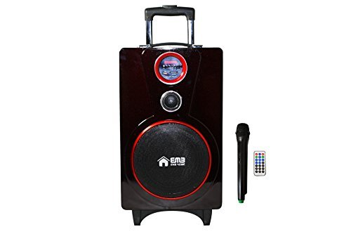 EMB PK82 RED Color 800W 8'' Portable Professional Rechargeable BOOM Box Speaker