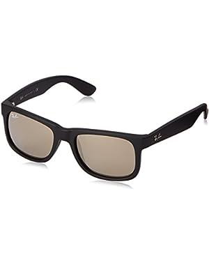Justin Sunglasses (RB4165) Plastic