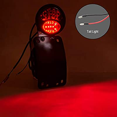 LED License Plate Light Tail Brake Light 3/4 Inch Axle Motorcycle Side Mount License Plate Curved Bracket Universal Compatible for Chopper Bobber Cruiser Harley Honda KTM Yamaha: Automotive