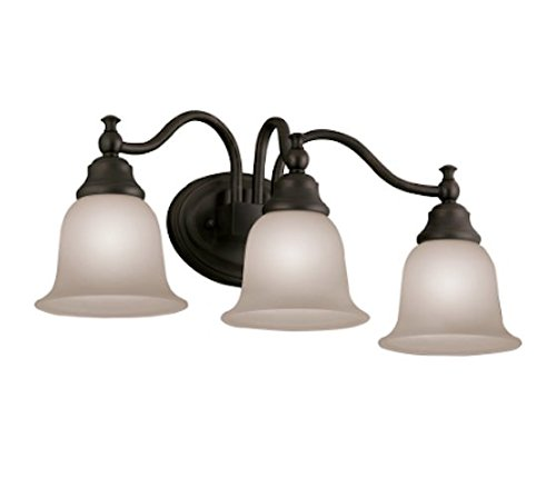 Portfolio 3-Light Brandy Chase Oil-Rubbed Bronze Bathroom Vanity Light
