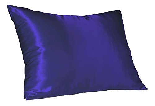 Satin Leopard Blue (Sweet Dreams Luxury Satin Pillowcase with Zipper, King Size (1 Pack), Royal Blue (Silky Satin Pillow Case for Hair) By Shop Bedding)