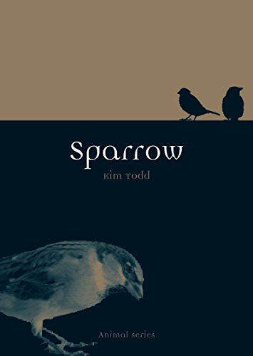 (Sparrow (Animal))