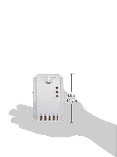 BEEPER DET-GN101 Detector de Gases Naturales y Soporíferos: Amazon.es: Coche y moto