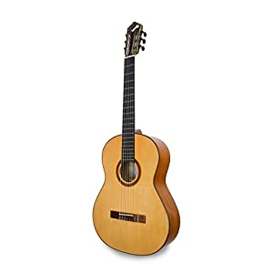 APC Instruments 9F Konzert Gitarre