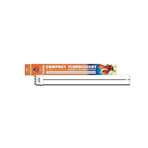 (10000k Compact Fluorescent Straight Pin Base)