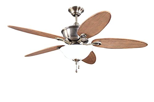 Litex E-CGL52CB5C1 Glenbrook Ceiling Fan with Five Walnut ABS and Reversible Mahogany/Chestnut Blades, Light Kit with Frosted White Glass, 52-Inch