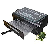 Hotline 2000 W Electric Tandoor (Black)