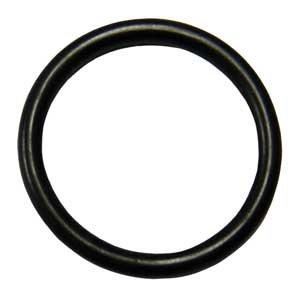 O-Ring for WMD/MD-20/30RLZT Iwaki Pumps