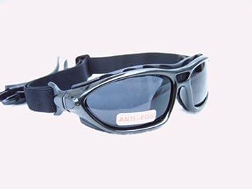 Alpland - Gafas de sol deportivas para esquí y surf con ...