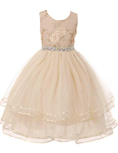 Champagne Little Girls Floral Embroidered Bodice Tulle Skirt Flower Dress #6456 Size 2 - Floral Embroidered Organza Dress